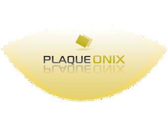 Logo Plaque Onix